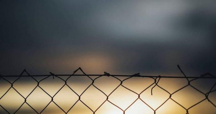 違法アップロードされた「風の谷のナウシカ」は見つからない上、無料視聴は危険。